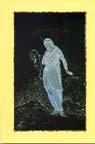 http://www.persianmemories.com/books/danishvar/savushun-tn.jpg